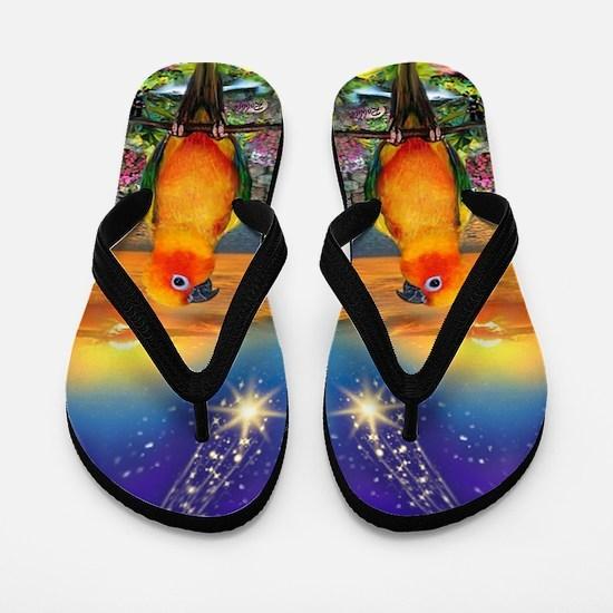 Sun Conure Parrot Star Gazing Flip Flops