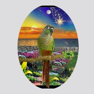 Green Cheeked Conure Star Gazer Oval Ornament