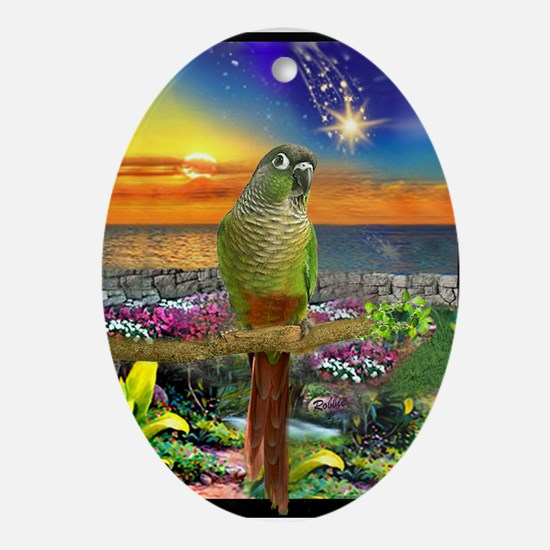 Green Cheeked Conure Star Gazer Oval Ornament