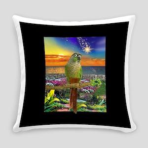 Green Cheeked Conure Parakeet Star Gazer Everyday