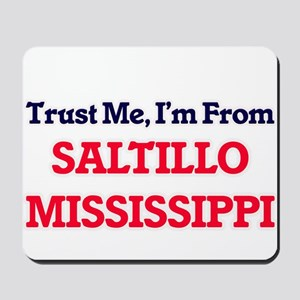 Trust Me, I'm from Saltillo Mississippi Mousepad