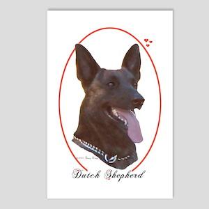 Dutch Shepherd Cameo Postcards (Package of 8)