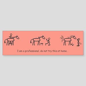 I am a Professional: Braider / Bumper Sticker