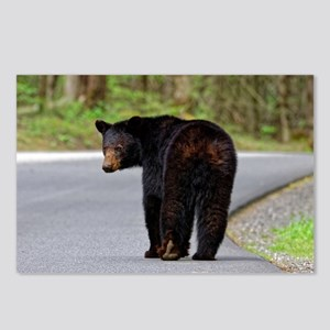 Walk-A-Long Bear Postcards (package Of 8)