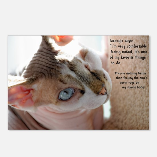 Georgie The Sphynx Postcards (package Of 8)