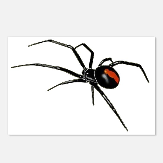 Unique Spider Postcards (Package of 8)