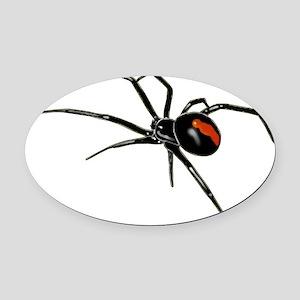BLACK WIDOW SPIDER Oval Car Magnet