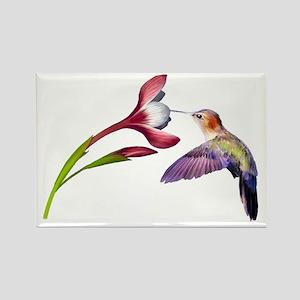 Hummingbird in flight Rectangle Magnet