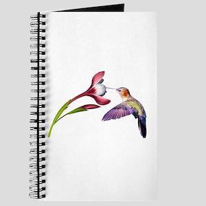 Hummingbird in flight Journal