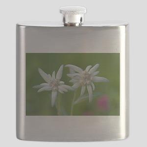 Edelweiss Flask