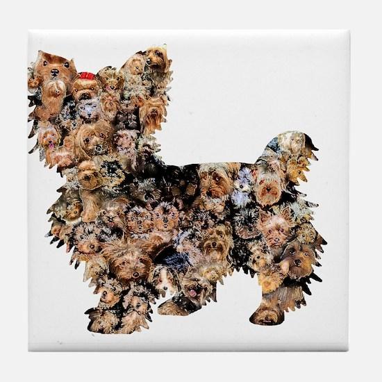 Too Many Yorkies Tile Coaster