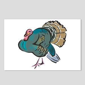 Pretty Wild Turkey Postcards (Package of 8)