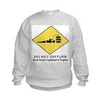Blood Alcohol Experiment In P Kids Sweatshirt