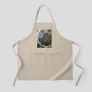 Ammonite Apron