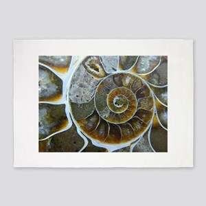 Ammonite 5'x7'Area Rug