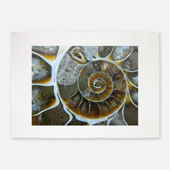 Ammonite 5'x7'Area Rug