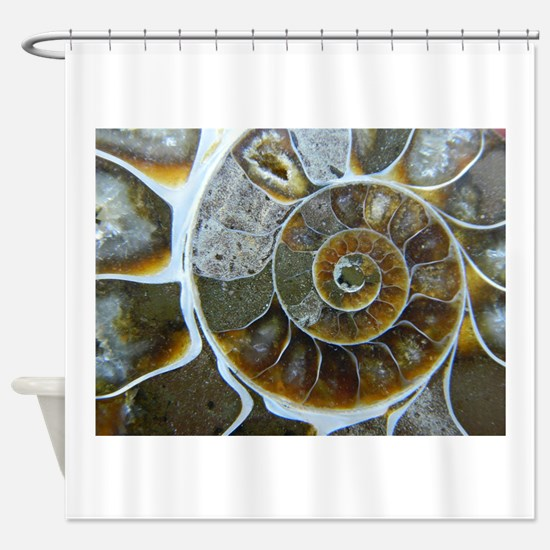 Ammonite Shower Curtain
