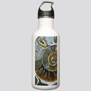 Ammonite Stainless Water Bottle 1.0L