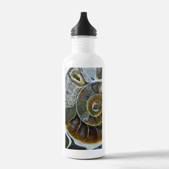 Ammonite Water Bottle