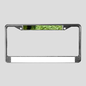 Moldavite License Plate Frame