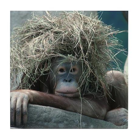 Orangutans Tile Coaster