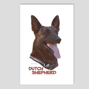 Dutch Shepherd Postcards (Package of 8)