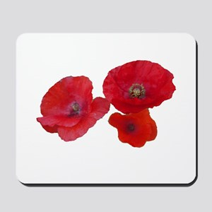 Three lovely red poppy flowers Mousepad