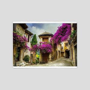 France Provence 5'x7'Area Rug