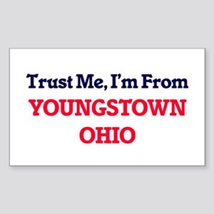 Trust Me, I'm from Youngstown Ohio Sticker