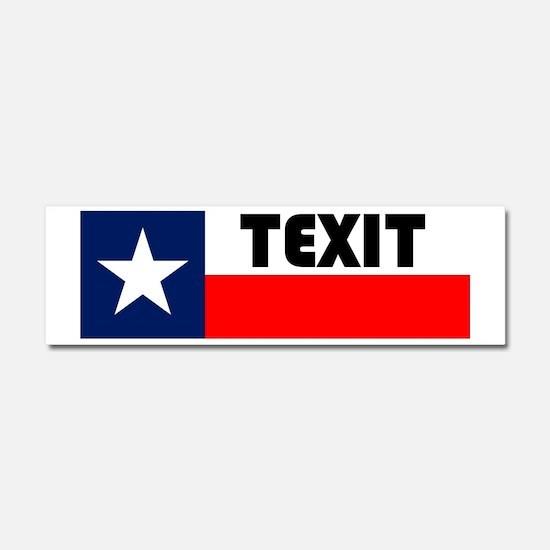Funny Texas secede Car Magnet 10 x 3