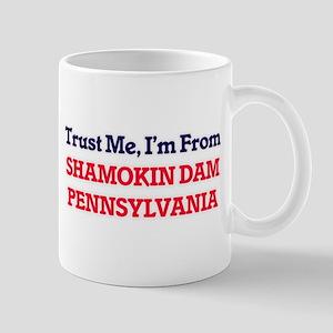 Trust Me, I'm from Shamokin Dam Pennsylvania Mugs