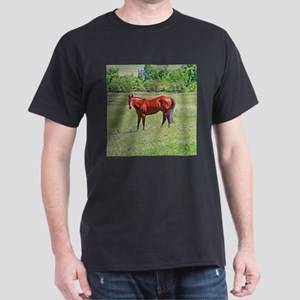 Awesome red horse Dark T-Shirt
