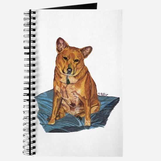 Unique Colored pencil art Journal