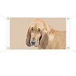 Bloodhound Banner