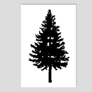 Oregon Douglas-fir Postcards (Package of 8)