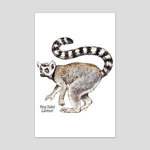Ring-Tailed Lemur Mini Poster Print