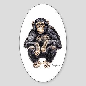 Chimpanzee Monkey Ape Oval Sticker