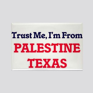 Trust Me, I'm from Palestine Texas Magnets