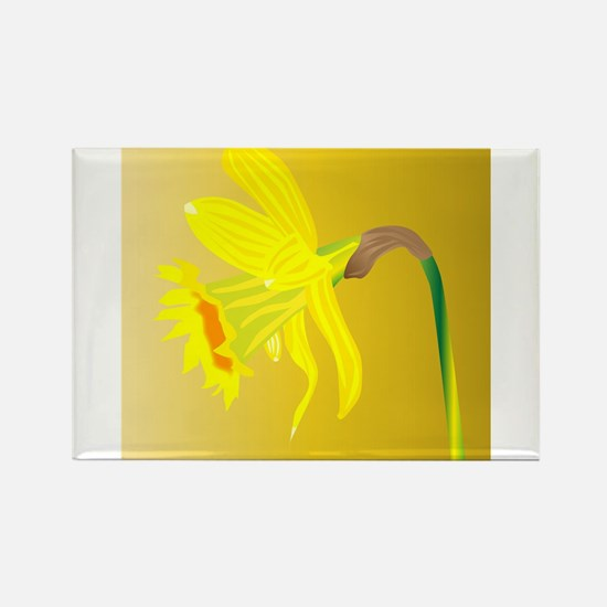Welsh Daffodil For Saint Davids Day Magnets