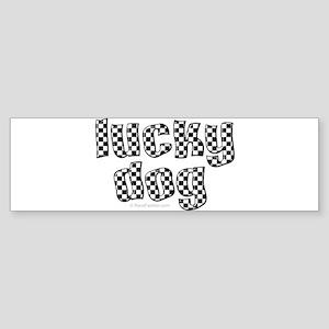 Lucky Dog Bumper Sticker