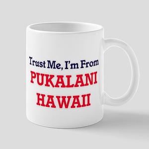 Trust Me, I'm from Pukalani Hawaii Mugs