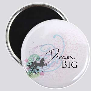 3-SBDreamBig2 Magnets