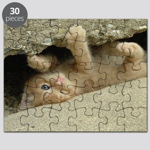 Orange Tabby Kitty Cat Puzzle