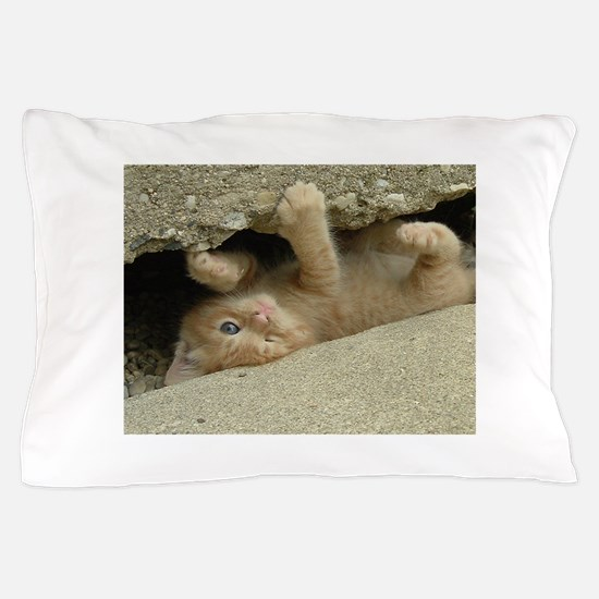 Orange Tabby Kitty Cat Pillow Case