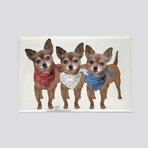 Patriotic Chihuahuas Rectangle Magnet