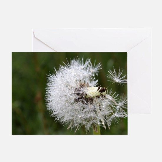 Unique Dandelion seeds blowing in the wind Greeting Card