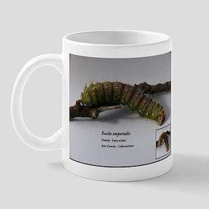 Imperial Moth Caterpillar Mug