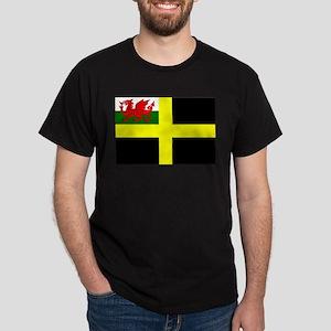Flag of Saint David T-Shirt