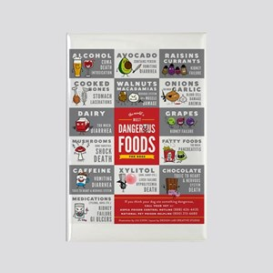 Toxic Dog Foods Magnets