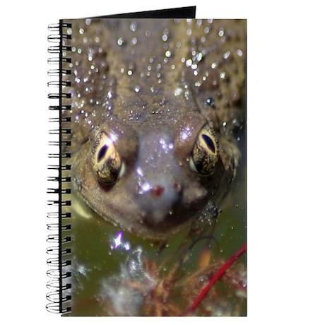 Spadefoot Toad Journal